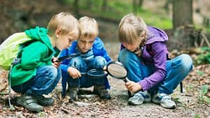 Group of children exploring nature on forest floor